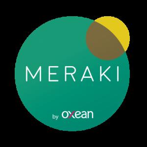 Logo Meraki by Oxean 01 500x500 300x300 - SERVICIOS